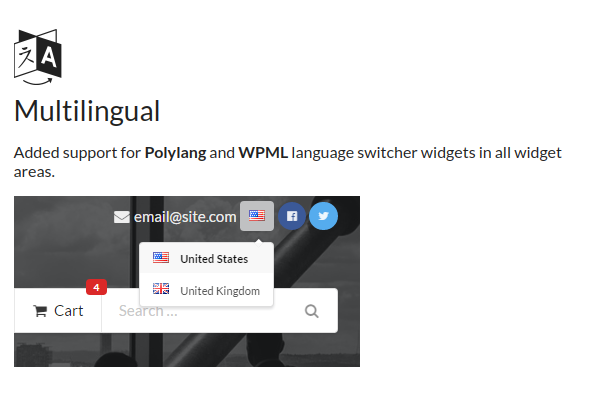 Multilingual - Chap theme supports Polylang and WPML language switcher widgets in all widget areas.