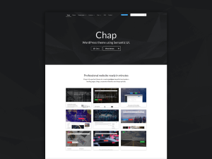 Chap WordPress theme